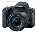 Canon EOS Rebel SL2 DSLR User Manual, Instruction Manual, User Guide (PDF)