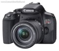 Canon EOS Rebel T8i DSLR User Manual, Instruction Manual, User Guide (PDF)